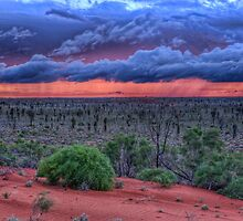 Desert Storm by Chris Mitchell
