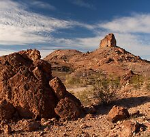 Cobra Mountain by James Eddy