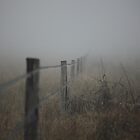 The Fenceline by Saraswati-she