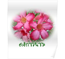 Azalea flowers a passion the beauty printed Poster