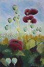 Poppies in pastels by © Pauline Wherrell