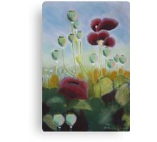 Poppies in pastels Canvas Print