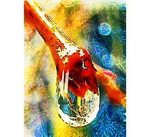 Living in a Liquid World Photographic Print