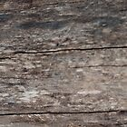 A Background of Weathered Wood by Sherry Hallemeier