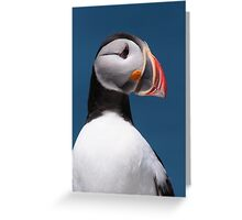 Atlantic Puffin II Greeting Card