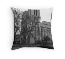 Notre Dame In Winter Throw Pillow
