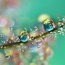 Smokey Rainbow Drops by Sharon Johnstone