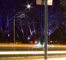 St Kilda Road Purple Trees by Sherene Clow