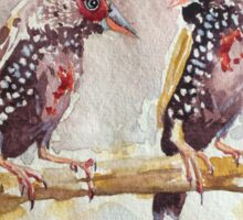 Painted Finches Sticker