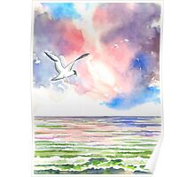 SEAGULL AT THE NORTH SEA Poster