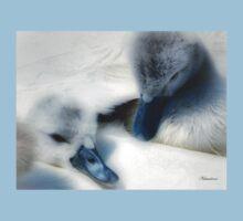 Fluffy Cygnets - Baby Wear Kids Tee