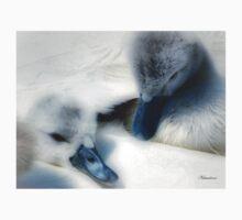 Fluffy Cygnets - Baby Wear by naturelover