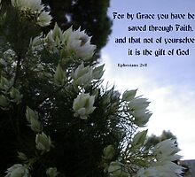 Grace: The Gift Of God by judygal