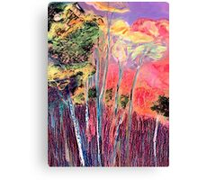 In The Colourful Woods Canvas Print