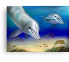 Dolphin Encounter Canvas Print