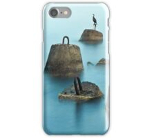Silhouette of the bird stood on a stone iPhone Case/Skin