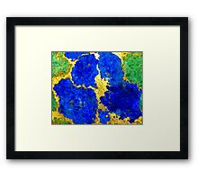 Terrazzo Pansy Framed Print