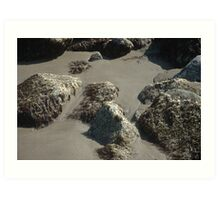 coastline rock Art Print