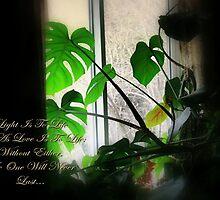 Life Love & Light by R-4-G