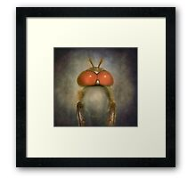 Take me to your leader...! Framed Print