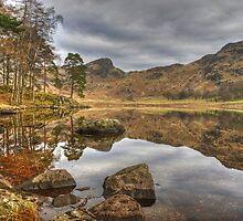 Blea Tarn,English Lake District by Jamie  Green