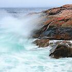 Sea Swept by Roupen  Baker