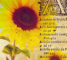 Vintage Sunflower by Norella Angelique