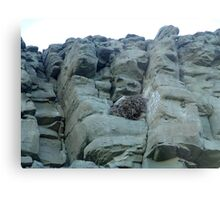 EAGLES NEST AND CLIFF SWALLOW DWELLINGS - BIG TIMBER, MT Metal Print