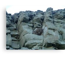 EAGLES NEST AND CLIFF SWALLOW DWELLINGS - BIG TIMBER, MT Canvas Print