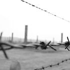 The Chimneys at Auschwitz  by jwgrayman