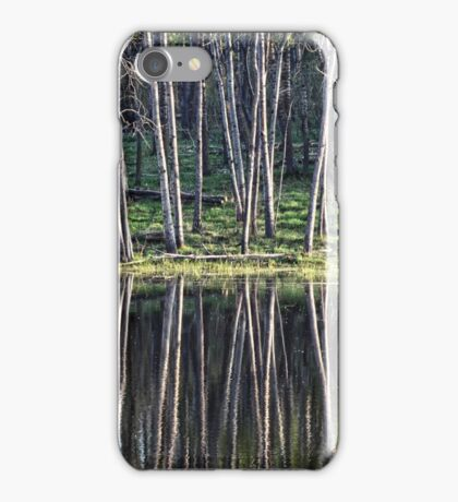 Marsh Reflections iPhone Case/Skin