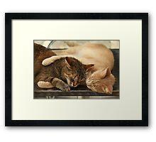 Real friendship (2) Framed Print