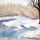 Winter Solitude by Diane Hall