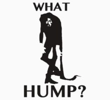What Hump? by ARENA PIX