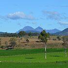Mt Barney by TheaShutterbug