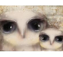 little owls Photographic Print