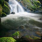 Cascade over Rock and Timber - Marysville, Victoria, Australia by Sean Farrow