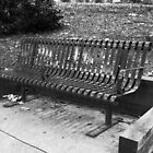 B & W Bench by ThinkPics