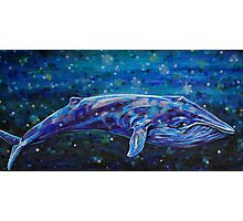 Big Blue Whale Photographic Print