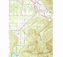 USGS Topo Map Washington State WA Lawrence 241959 1952 24000 by wetdryvac