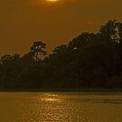 Carolina Sunset by Paul Kavsak