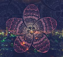 hippie pink frangipani mandala on gold coast night bokeh by faithie