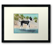 Great Dane Dog Beach Dunes Cathy Peek Framed Print