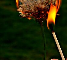 Catch My Dreams And Burn My Wishes by LlandellaCauser