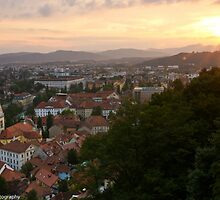 Goodnight Ljubliana, Slovenia by Cliff Williams