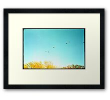 Seven Ducks Over Trees Framed Print