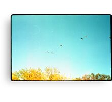 Seven Ducks Over Trees Canvas Print