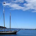 Anchored - Batemans Bay Harbour by Marilyn Harris