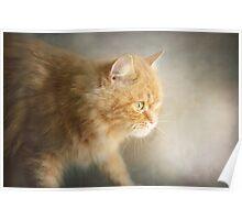 The Ginger Hunter Poster