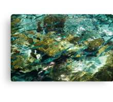 Abstract of the Underwater World. Production by Nature Canvas Print